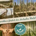 FHR hat mit seiner Marke `werkhaus` ein Zeichen gesetzt, fördert die Wiederaufforstung des deutschen Waldes